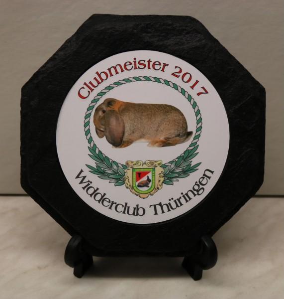 Schieferlook-Teller ST 63555T